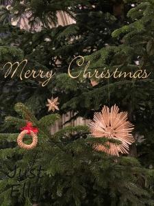 Merry Christmas 2019-1